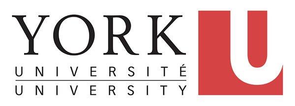 logo_yok_university